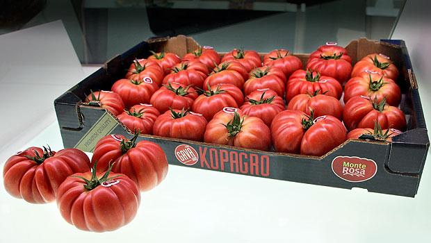 Monterosa-tomate
