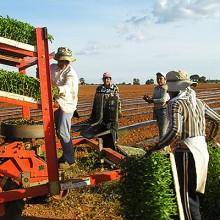 Ayudas a programas de formación en el medio rural