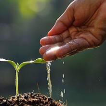 Asociación Innovación Sostenible para el Sector Agroalimentario