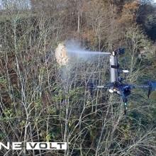Erradicar la avispa asiática mediante pulverización con drones