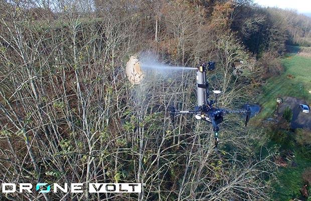 Drone-Volt-Spray-Hornet-Asian