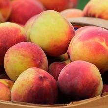 Se prevé una caída del 3,6% en la próxima cosecha de fruta de hueso