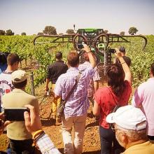 Jornada técnica sobre aplicación de fitosanitarios en viñedo