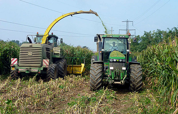 BKT_Harvesting