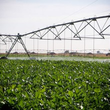 Fenacore pide que no se dejen de cubrir las necesidades básicas de agua
