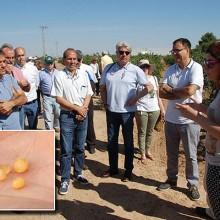 XIV reunión de la Red de Uso Eficiente del Nitrógeno en la Agricultura