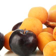 La cosecha de fruta de hueso en España se reducirá un 11,9%