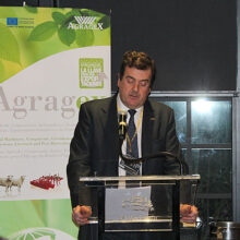 Jaime Hernani, presidente del Comité Organizador de FIMA 2018