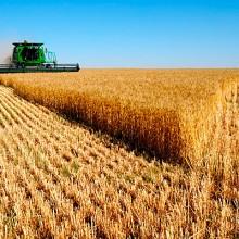 La Renta Agraria crece un 5,1% en 2016