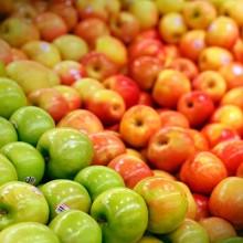 La exportación de frutas y hortalizas aumentó en 2016