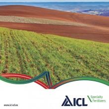 Nuevo catálogo de productos de ICL