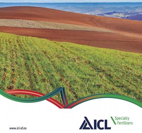 ICL-Web