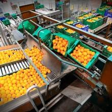 Fernando Miranda analiza la novedades del sector hortofrutícola