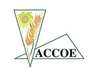 accoe