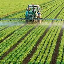Pesticidas falsificados: un problema caro y peligroso