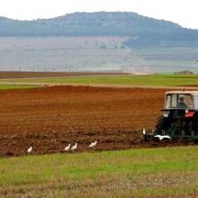 Aprobada una modificación de la norma sobre productos fertilizantes