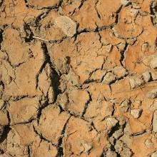 El MAPAMA aprueba medidas frente a la sequía