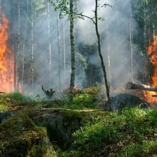La prevención de incendios es responsabilidad de todos