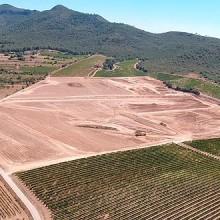 Topcon: innovación en una empresa vinícola tradicional catalana