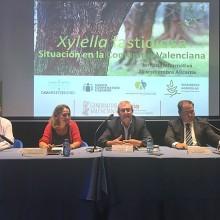 El problema de la Xylella fastidiosa a debate en Alicante