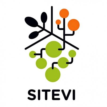 Logo-SITEVI-WEB