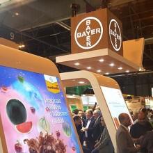 Nunhems de Bayer conquista Fruit Attraction