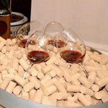 Programa de apoyo al sector vinícola 2019-2023