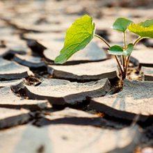 Jornada: «Desafíos del Seguro Agrario: cambio climático y gestión de riesgos»