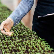 Grupo Agrotecnología impulsa nuevas líneas de I+D con ECOPEST