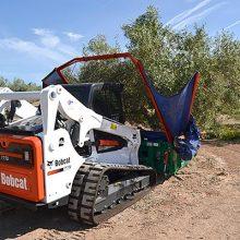 Bobcat, un aliado para la recolección de la aceituna