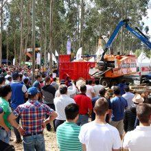 La feria Galiforest Abanca acogerá más de 150 demostraciones en vivo de maquinaria forestal