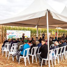 Finaliza el I Fórum de Maíz de Castilla y León organizado por Corteva Agriscience