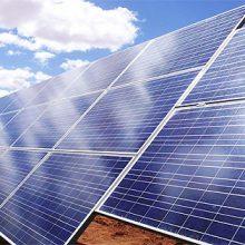 """La derogación del """"impuesto al sol"""" será beneficiosa para el sector agrario, según FENACORE"""