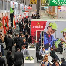 Start-up Day en Fruit Logistica 2019