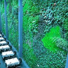 El jardín vertical interior más grande de Europa está en Alcorcón