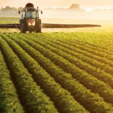 La Ley de Seguros Agrarios cumple 40 años