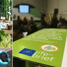 Life in Brief, proyecto para procesar residuos en plantas de biogás