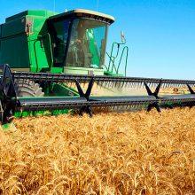 Autorizada la suscripción de un Convenio entre ENESA y AGROSEGURO