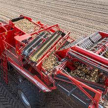 Grimme mostrará su tecnología en Potato Europe