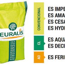 Big Bang Colza, nueva gama de semillas de Euralis