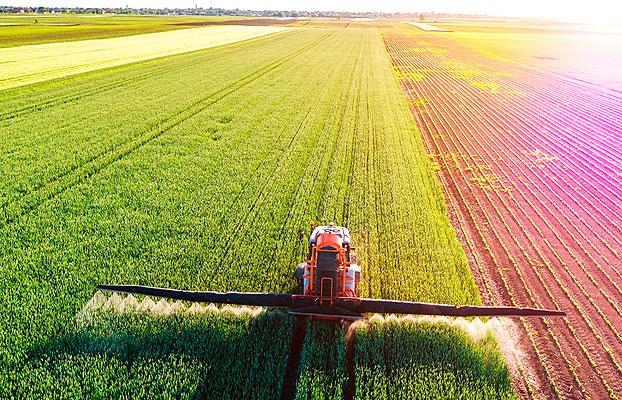 Fenacore Agricultura Reconstrucción
