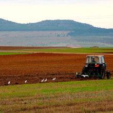 Nuevo convenio entre Enesa y Agroseguro para los planes de seguros agrarios 2020
