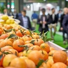 """Fruit Attraction 2020 será """"telepresencial"""" del 1 al 31 de octubre"""