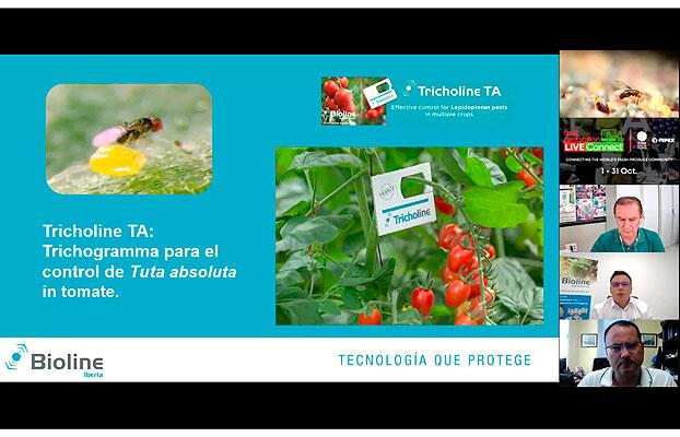Bioline Iberia presenta su Trichogramma en Fruit Attraction LiveConnect