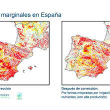 Nuevos cultivos en zonas de baja productividad, análisis de Cooperativas