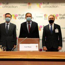 La plataforma Fruit Attraction LIVEConnect se presenta oficialmente