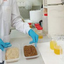 AINIA desarrolla nuevos ingredientes proteicos procedentes de insectos